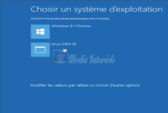 image menubootmintwindowspng.jpeg (21.6kB)